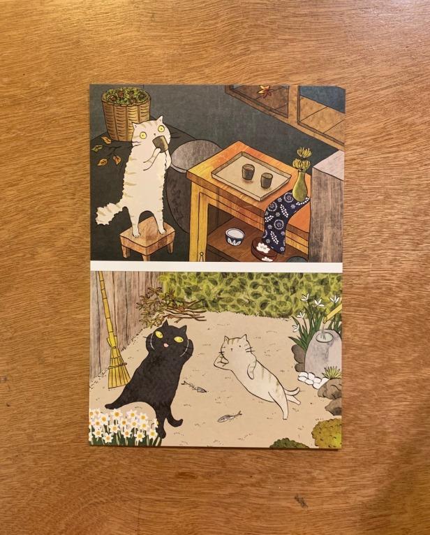貓小姐明信片